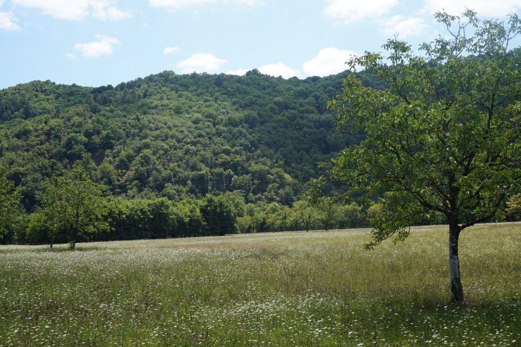 Zicht over de vallei vanaf het B-niveau
